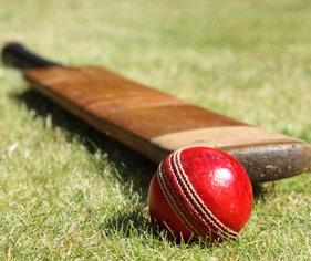 Cricket Website Builder & Team Manager