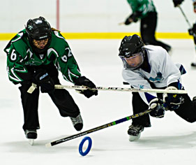 Ringette Website Builder & Team Manager